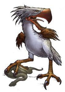 Skullcracker Bird with Kill