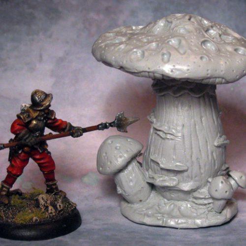 Death's Crown Mushroom