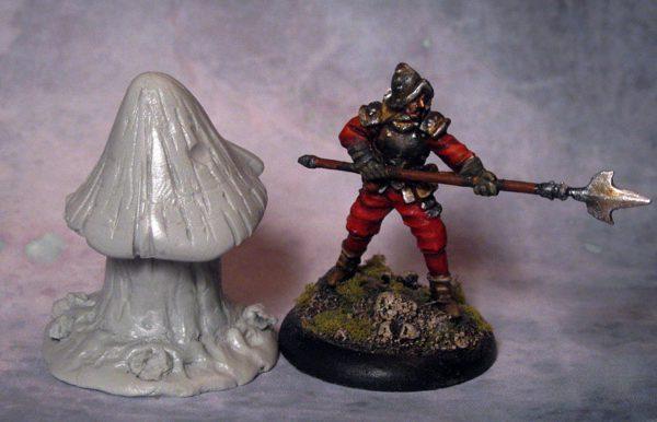 Elf Cap Mushroom