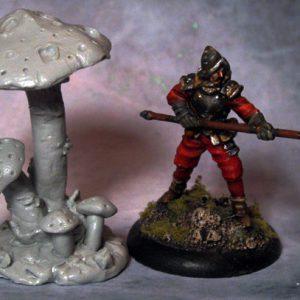 Thin Stalk Mushroom